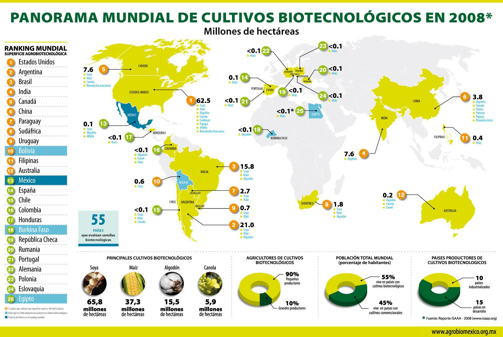 Oleaginosas - Situación mundial de la comercialización de